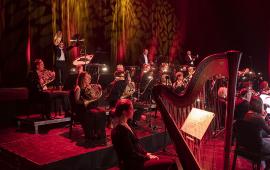 Mizucy Toruńskiej Orkiestry Symfonicznej grają na instrumentach, na pierwszym planie harfa