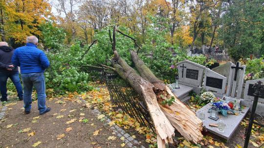 Drzewo zwalone na nagrobki w nocy z 21/22 października 2021 r. na cmentarzu św. Jerzego, fot. Małgorzata Litwin