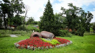 Kwiaty rosnące na terenie Zielonej Bramy Gotyckiej Starówki
