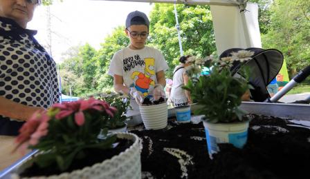 warsztaty sadzenia roślin