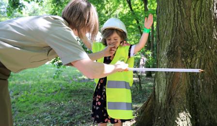 nauka mierzenia drzew